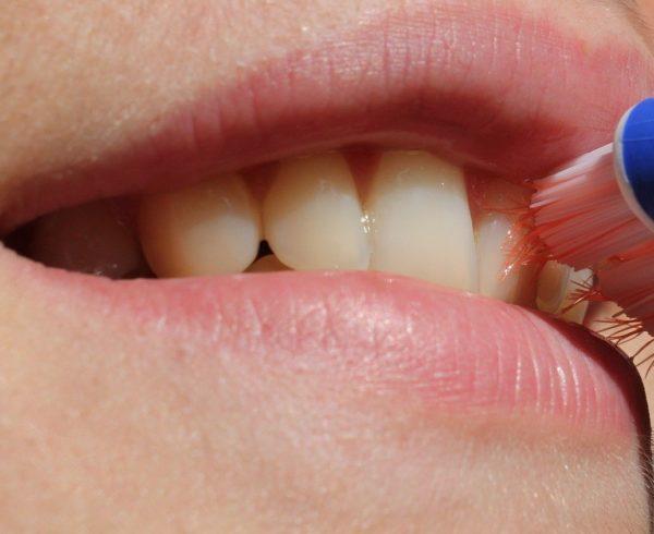 Imagen de la noticia Salud dental del niñ@ y hábitos en familia
